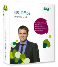 GS Office Professional